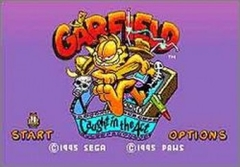 Garfield-Caught in the Act